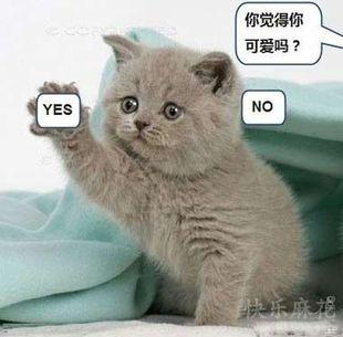 搞笑萌物图片大全 - 江南浪子 - 江南浪子的博客