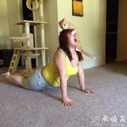 看到你在做瑜伽?