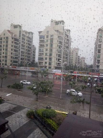 这雨下的。。。这风刮的。。。